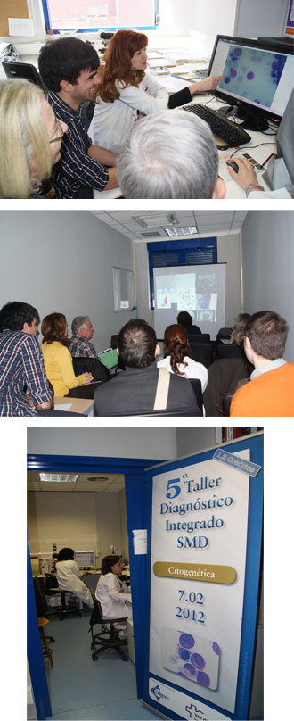  Taller Diagnstic Integrat SMD